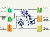 Медиков встревожила мутация дифтерийной палочки