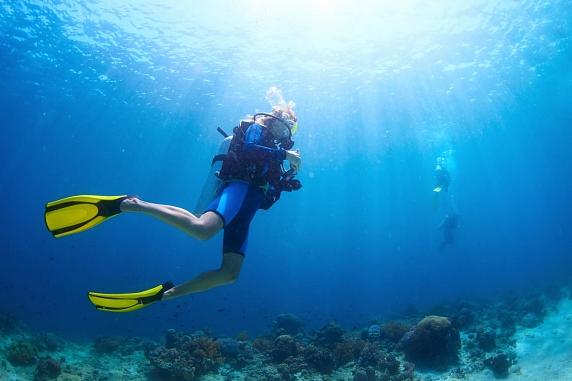 Дайвинг в Крыму: увлекательное подводное приключение